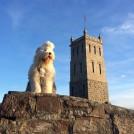 Melba på Slottsfjell