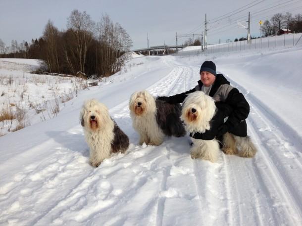 Nils Henrik med hunder