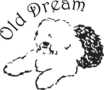 Old English Sheepdog fra Old Dream
